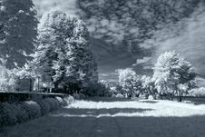 Free Infrared Park Stock Image - 48353971