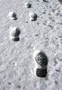 Free Foosteps In Snow Stock Image - 4843931