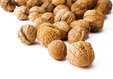 Free Walnuts Royalty Free Stock Photo - 4840535