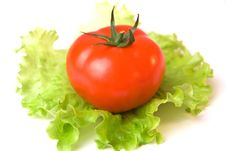Free Tomato And Salad Stock Photo - 4840660