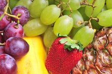Free Fruits Stock Photography - 4840852
