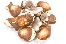 Free Chocolate Pralines Stock Photography - 4841072
