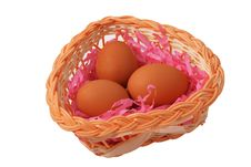 Free Three Eggs Royalty Free Stock Images - 4841719