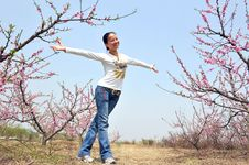 Free Girl In Peach Tree Garden Royalty Free Stock Photography - 4842017