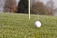 Free Golfing Royalty Free Stock Photography - 4842167