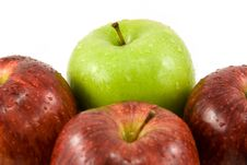 Free Red And Green Apples Royalty Free Stock Image - 4842756
