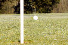 Free Golfing Stock Image - 4842881