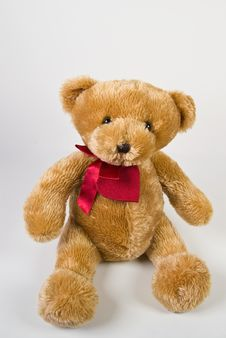 Classic Teddy Bear Stock Image