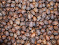 Free Raw Pecans-The New Health Food Royalty Free Stock Image - 4843106
