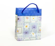 Free Shopping Bag Royalty Free Stock Image - 4843496