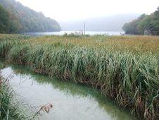 Free Croatia Plitvice Lakes National Park Stock Image - 4844821