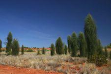 Free Beautiful Landscape Stock Photo - 4845670