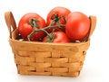 Free Basket Full Of Tomatoes Royalty Free Stock Photo - 4851505