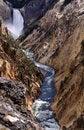 Free Yellowstone Falls Stock Photo - 4855600