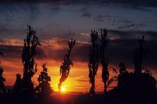 Free Sunsetting Stock Photo - 4850770