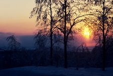 Free Winter Sunset Royalty Free Stock Image - 4850836