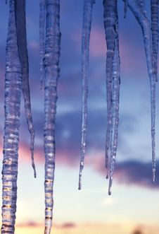 Free Icicles Royalty Free Stock Photography - 4850847