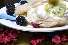 Free Creamy Cakes Stock Photography - 4851372
