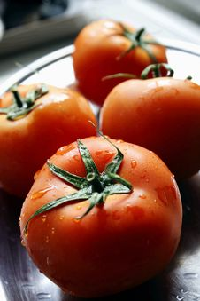Free Fresh Wet Tomatoes Royalty Free Stock Photos - 4852078