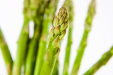 Asparagus Tips Stock Image