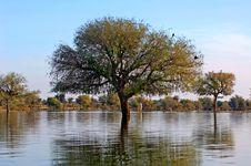 India, Rajasthan, Jaisalmer: The Lake Stock Images