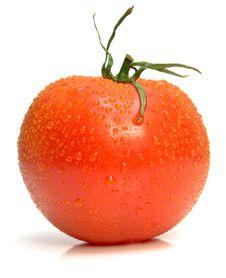 Free Wet Ripe Tomato Stock Image - 4854541