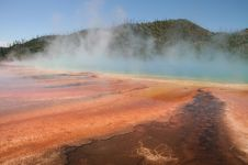 Free Grand Prismatic Spring Royalty Free Stock Photos - 4856448