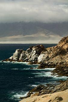 Free Wild Chilean Coast Stock Images - 4857024