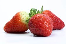 Free Strawberry Royalty Free Stock Photography - 4859147