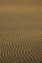 Free Vertical Sand Ripples Stock Images - 4865484