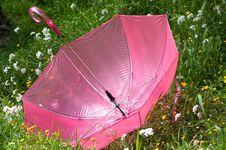 Free Umbrella Stock Photos - 4861913