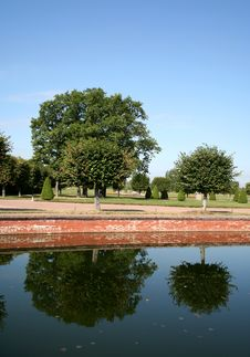 Free Two Trees Are Reflected In The Calm Pond Stock Photo - 4863170