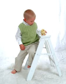 Boy And Chicken On Ladder Royalty Free Stock Photo