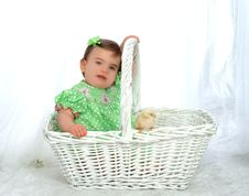 Free Me And Chicken In Basket Royalty Free Stock Photos - 4864448