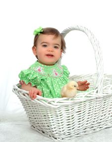 Me And Chicken In Basket Stock Photography