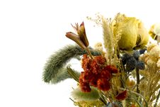 Free Dried Bouquet Royalty Free Stock Image - 4867216