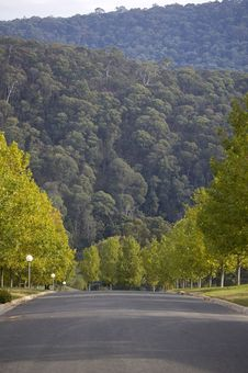 Road Over Hill Royalty Free Stock Photos