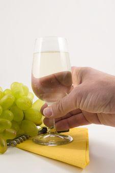Free Wine And Around It Stock Photography - 4868912