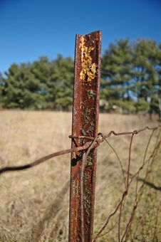 Free Rusty Fence Royalty Free Stock Photography - 4868927