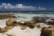 Free Mexico Ocean Rocky Coastline Royalty Free Stock Image - 4872476