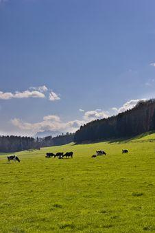 Free Swiss Range Royalty Free Stock Image - 4872666