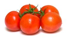 Free Perfect Juicy Tomatoes Royalty Free Stock Image - 4873116