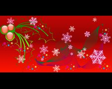 Free Christmas Holly Stock Images - 4875914