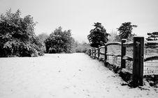 Free Snow Royalty Free Stock Photo - 4875955