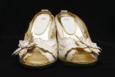 Free Lady Shoe Royalty Free Stock Photos - 4876978