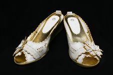 Free Lady Shoe Stock Image - 4877101