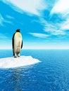 Free Penguin Royalty Free Stock Photography - 4884587