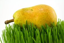 Free Pear On Grass Stock Image - 4880091