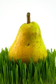 Free Pear On Grass Stock Photo - 4880130