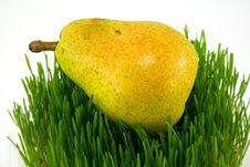 Free Pear On Grass Stock Photo - 4880170